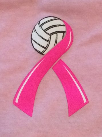 Girl's Volleyball Hopes to Raise Funds at Dig Pink Game Tonight