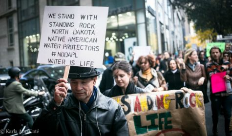What the DAPL is and Why You Should Care