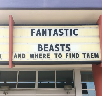 """Fantastic Beasts and Where to Find Them"" in theaters now. Photo by: Katelin Tyler"