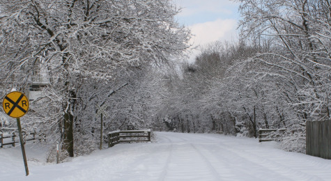 2014-2015 Winter Predictions