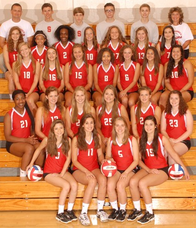 The 2015 Girls Volleyball Team