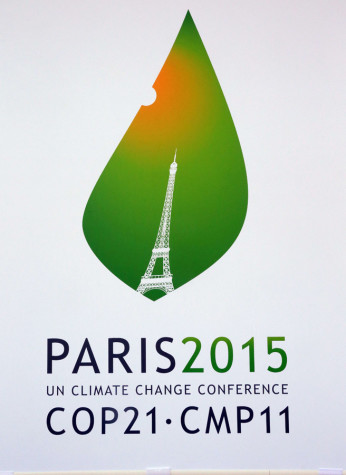 This pictures shows the logo of the climate conferences in Paris, which takes place from November 30 until December 11.