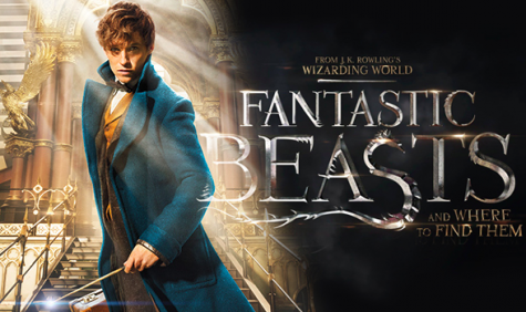 'Fantastic Beasts…' Finds Harry Potter Fans