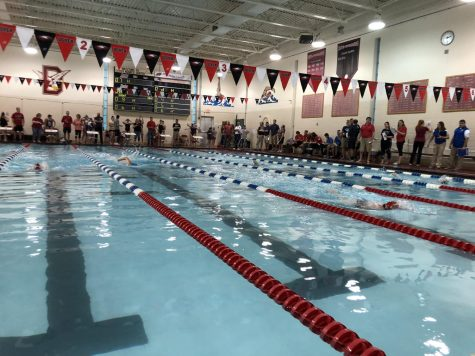 Swim Team Competes in District Championships