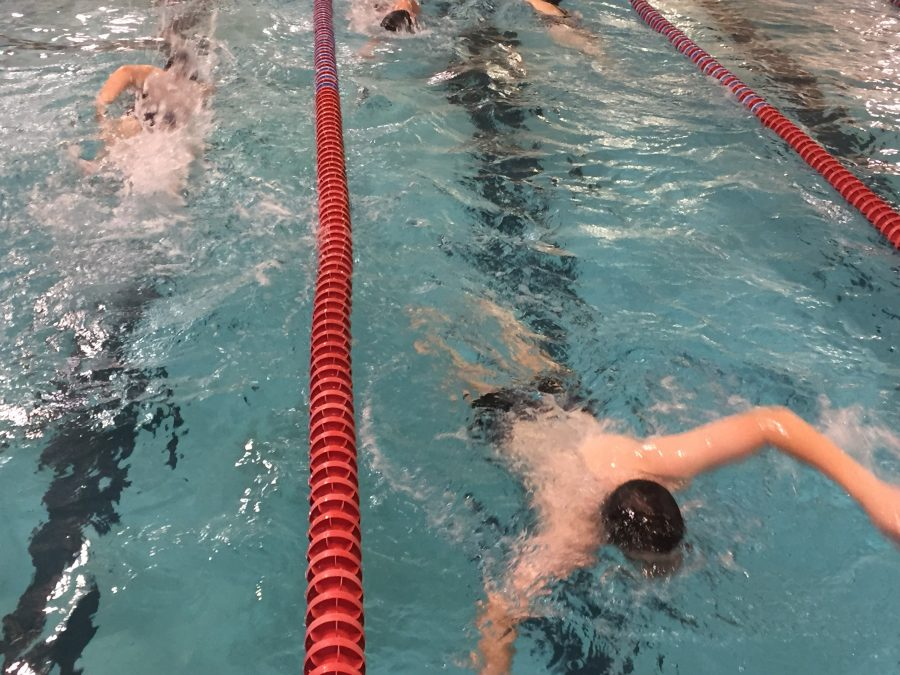 Swimmers practicing their swimming skills and new techniques.