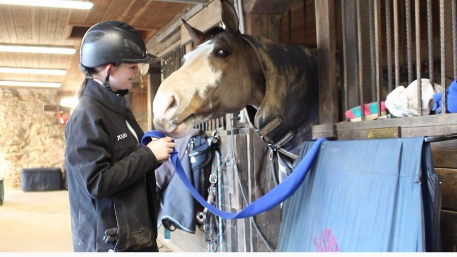 Student Equestrians Strive to Find Time to Compete