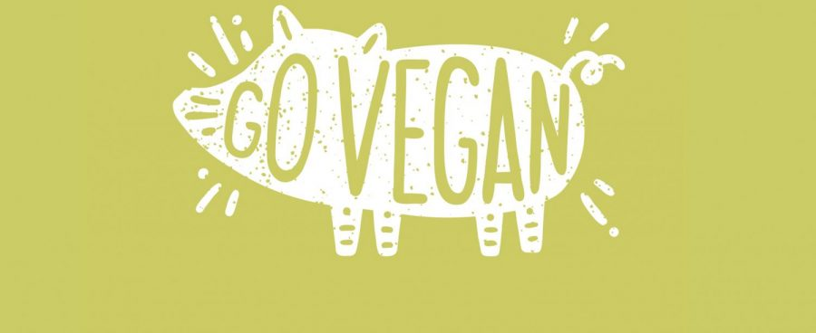 Plant-Powered: Why You Should Go Vegan