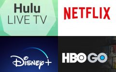 Streaming Service Competition Grows
