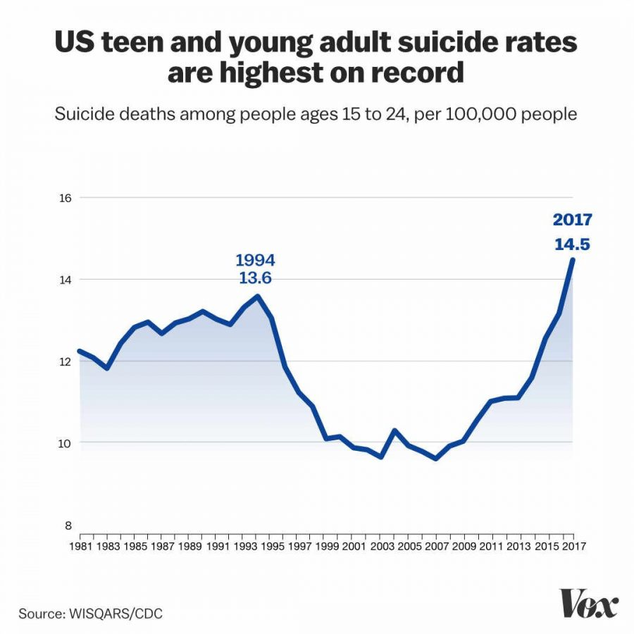 Teen Suicide: Warnings and Prevention