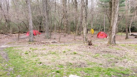 A group of tents set up to sleep in for the night on the Appalachian Trail. Photo via Kylie Vantassel.