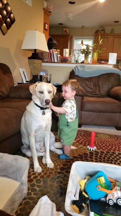 English teacher Sara Mooney's son Lucas pets their Labrador-Husky mix Harley.  Photograph by Sara Mooney
